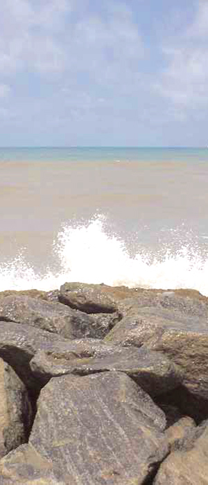 Ingenieria costera y litoral